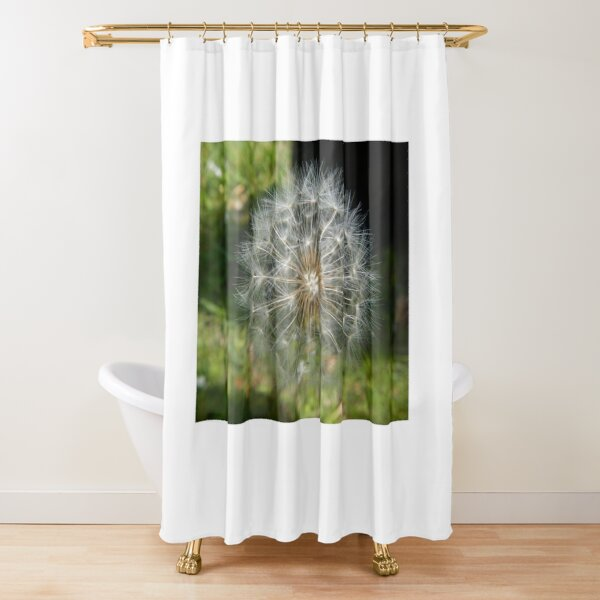 Dandelion Seeds Shower Curtains Redbubble
