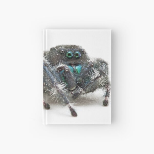 Daring Jumping Spider Hardcover Journal