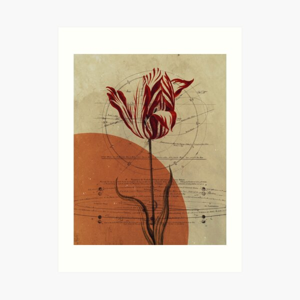 The Science of Beauty - Vintage Flower Collage Art Print