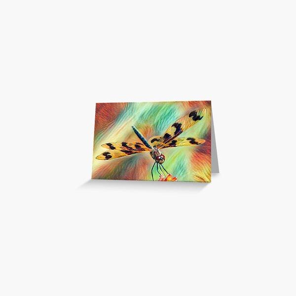 Graphic Flutterer Dragonfly Greeting Card