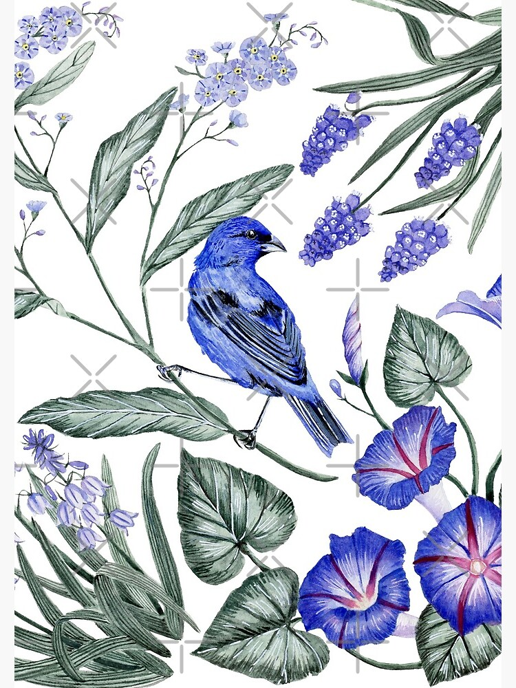 Indigo Bunting & Flowers by JClaireMaher