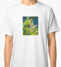 Dragonfly resting Classic T-Shirt