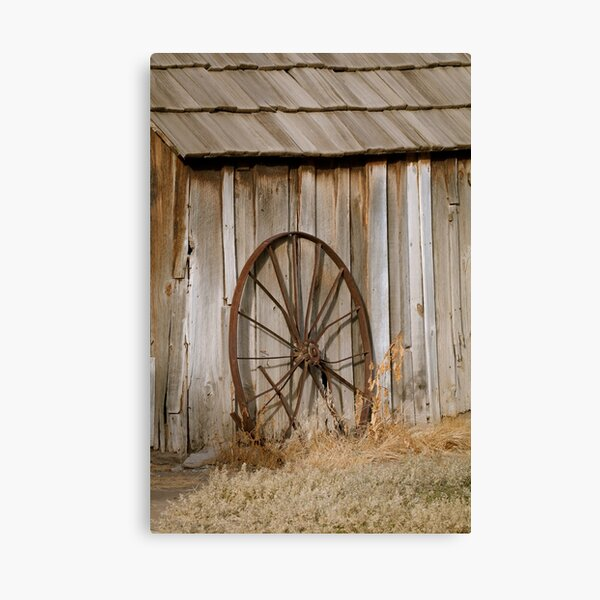 Old Wheel and Shed at Cant Ranch Canvas Print