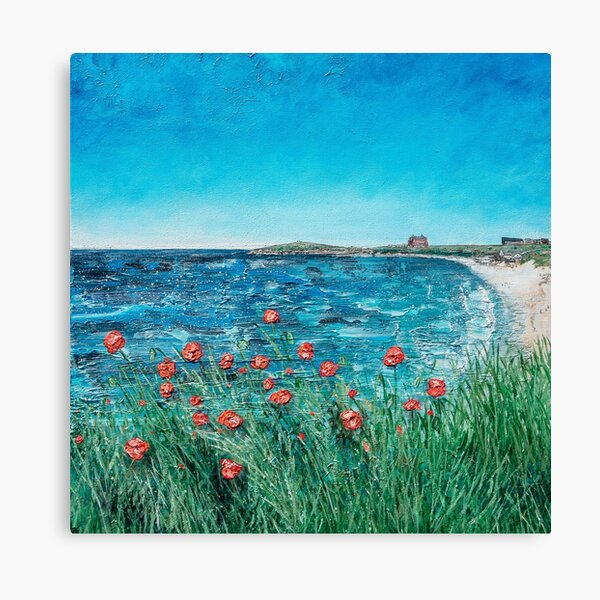 Wild Poppies at South Fistral, Cornwall Art Canvas Print