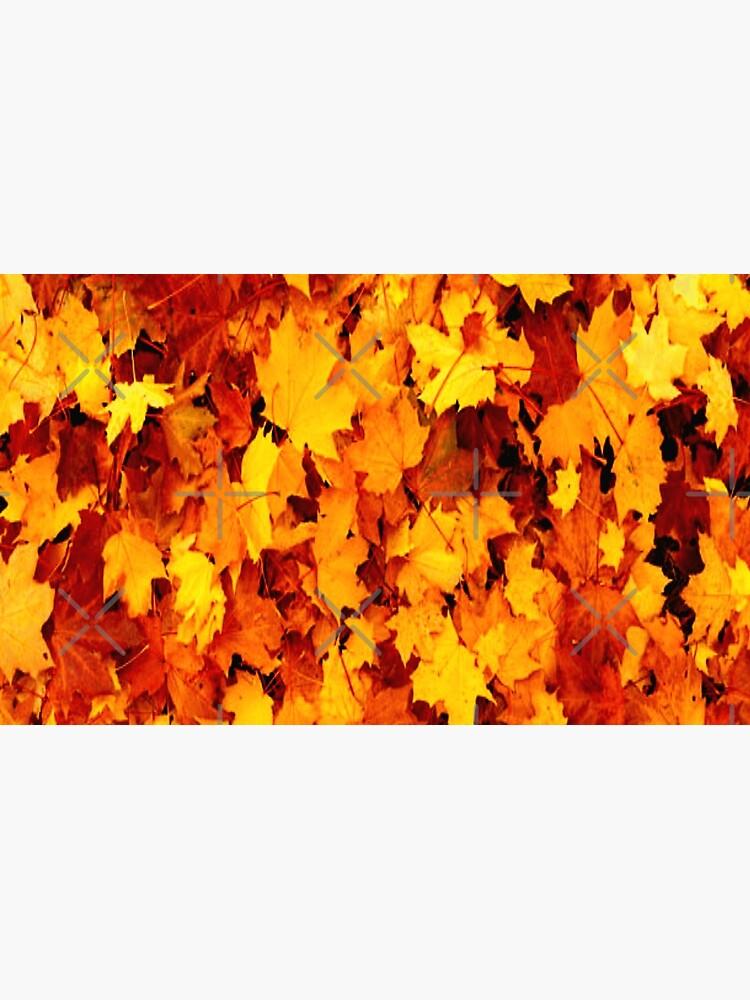 Golden Autumn Maple Leaves by RipeBananaShop