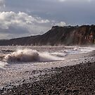 WINTER WAVES by Michael Carter