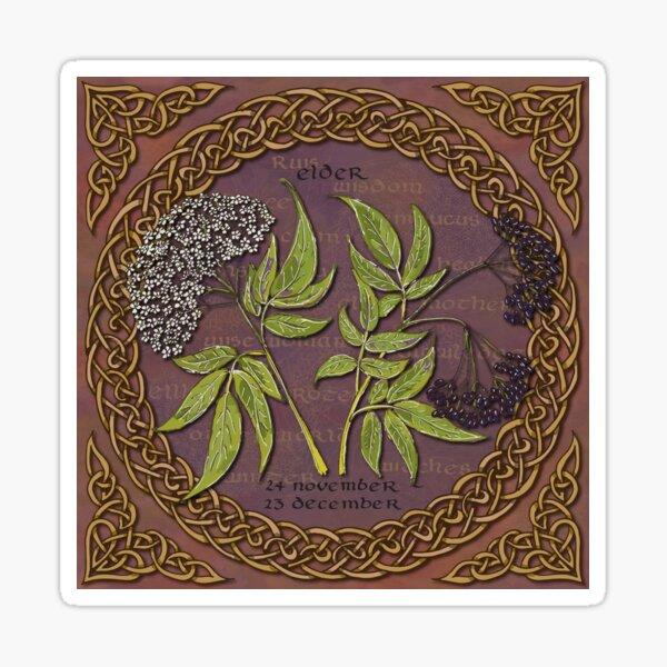 Celtic Tree Calendar Elder Sticker