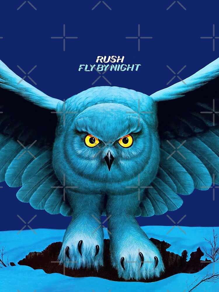 Fly by Night (HQ) by MonkeyBusyness1