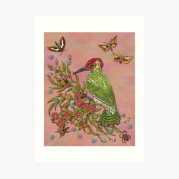 Vintage Woodpecker Art Print