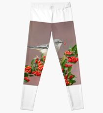 Northern Mockingbird and berries Leggings