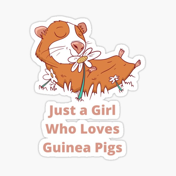 Just a Girl Who Loves Guinea Pigs  Sticker