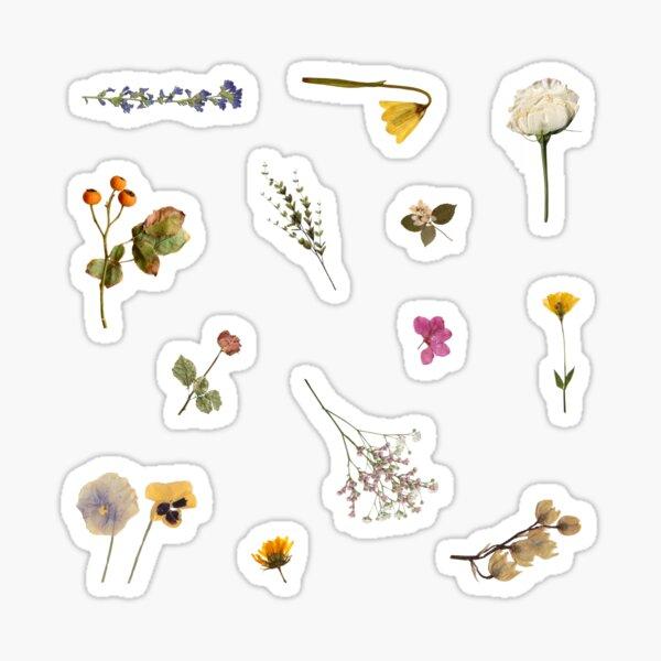 Minimalistic Pressed Flowers Sticker Set Sticker