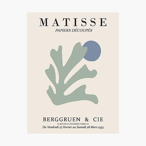 Henri Matisse - Algae Cutout - Papiers Découpés - Nouveau Impression photo