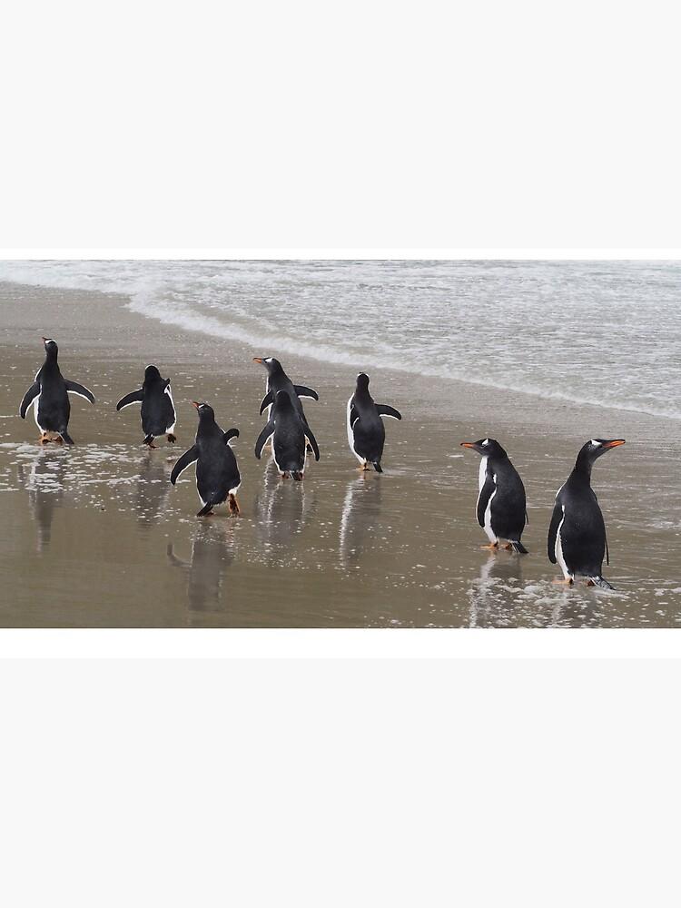 Penguin March by AntarcticShop