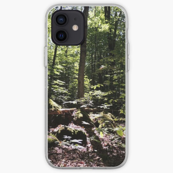 Walk To The Caves iPhone Soft Case