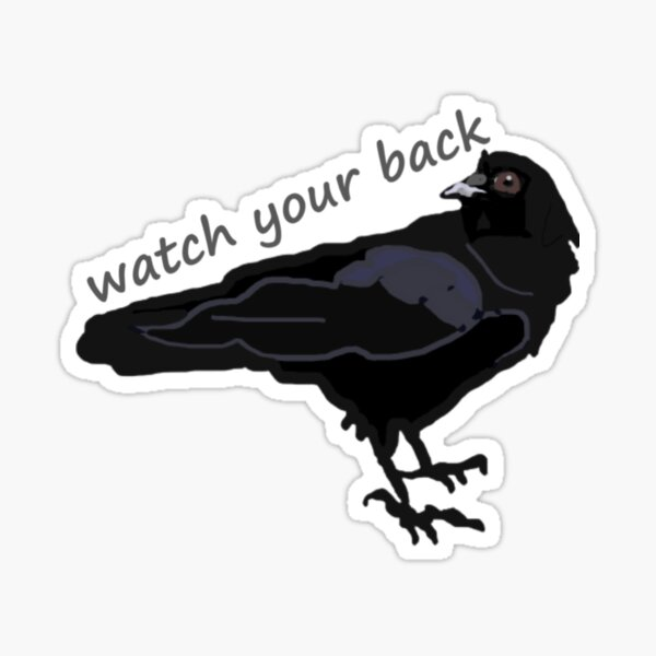 Black Crow Raven with saying watch your back above the crows Sticker