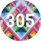 «305 miami wynwood walls» de alexwein