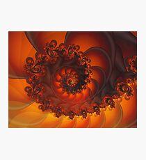 Decorative Shell Fractal  Photographic Print