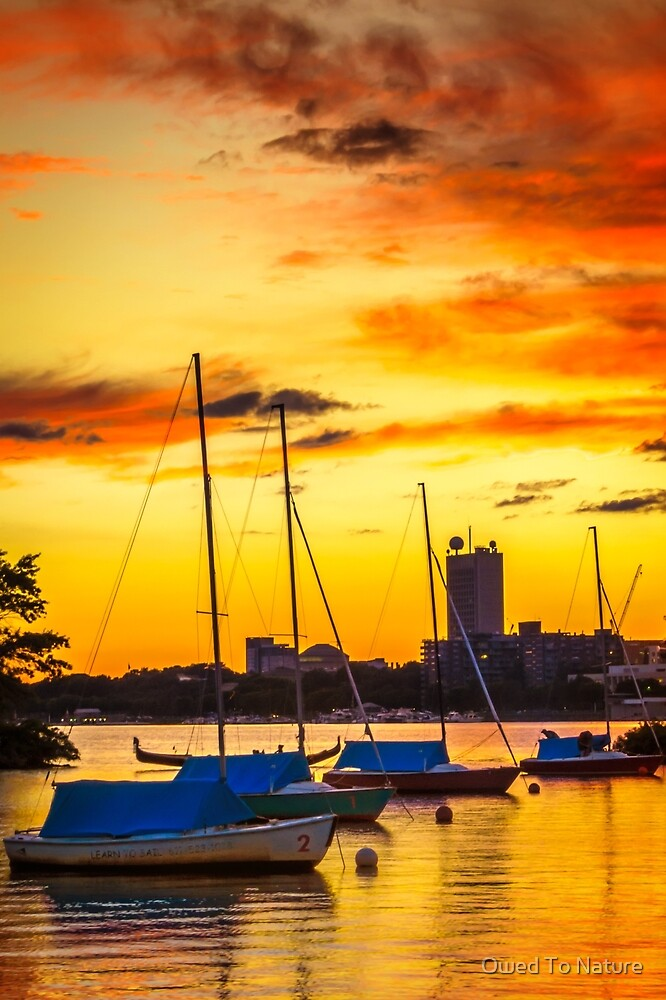 Anchored in gold by Owed To Nature