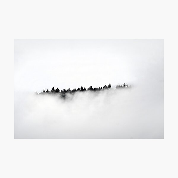 Trees in the clouds Photographic Print