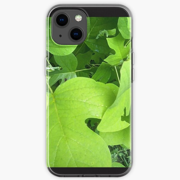 Green Leaves iPhone Soft Case