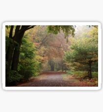 Dreamy Paths of Autumn Gold Sticker