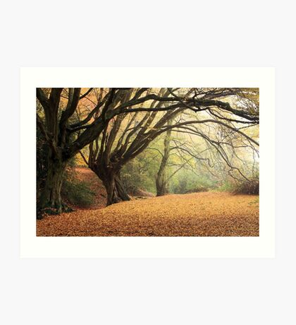 Autumn Spirit Art Print