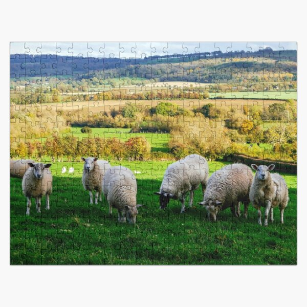 Sheep in the Cotswolds Jigsaw Puzzle