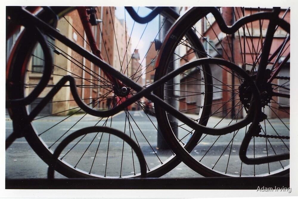 Bikes by Adam Irving