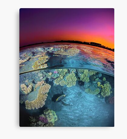 Dusk at the Red Sea Reef Canvas Print
