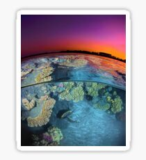 Dusk at the Red Sea Reef Sticker