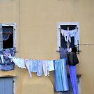 Wash Day At Rovinj Croatia by lynn carter