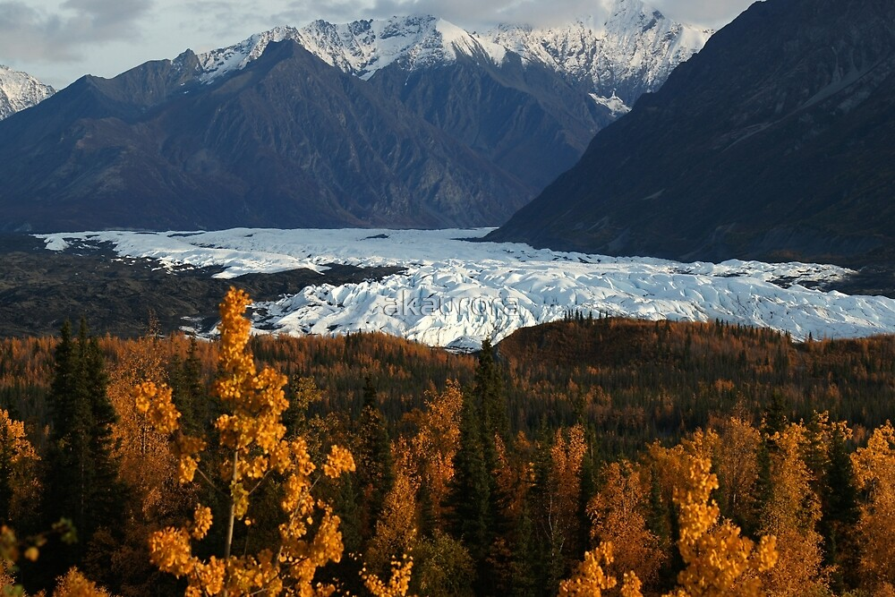 STOCK ~ Fall Surrounds Matanuska Glacier ~ Chugach Mountains  by akaurora
