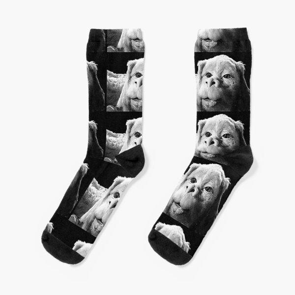 Falkor The Luck Dragon From The Neverending Story Design Socks