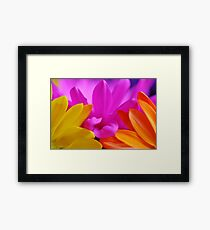 Pink, Yellow and Orange Framed Print