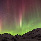 Night Lights # 2 by akaurora