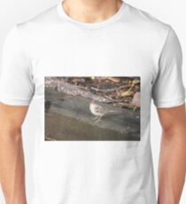 Rufous Crowned Sparrow T-Shirt
