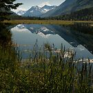 STOCK ~ Tern Lake in Reflection by akaurora