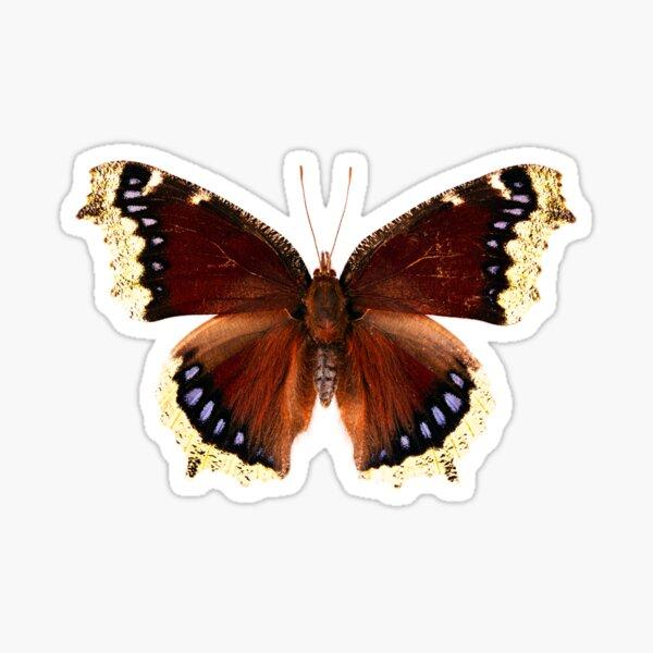 Mourning Cloak Butterfly (Nymphalis antiopa) Sticker