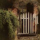 Garden Gate by Barbara  Brown
