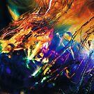 Rainbolic - Experimental Prism Photograph #09 by jeffjag