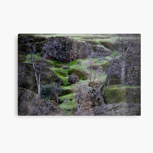 Northern California trails Metal Print