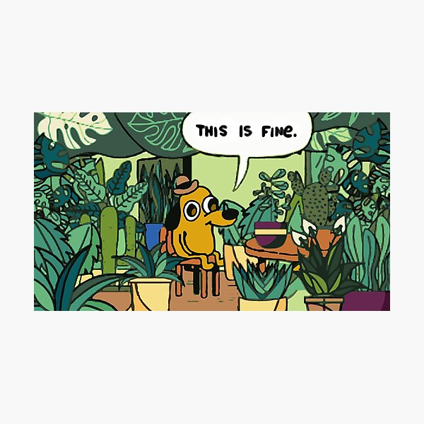 This is fine plant edition Photographic Print