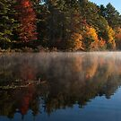 STOCK ~ Fall ... A Time To Reflect   by akaurora