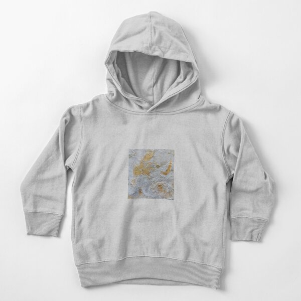 gray and gold Toddler Pullover Hoodie