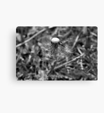 Survival is beautiful Canvas Print