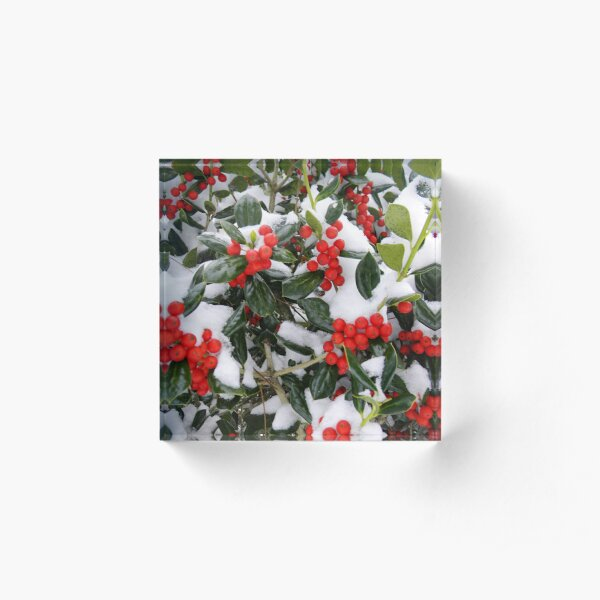 Merry Christmas 2020 Acrylic Block