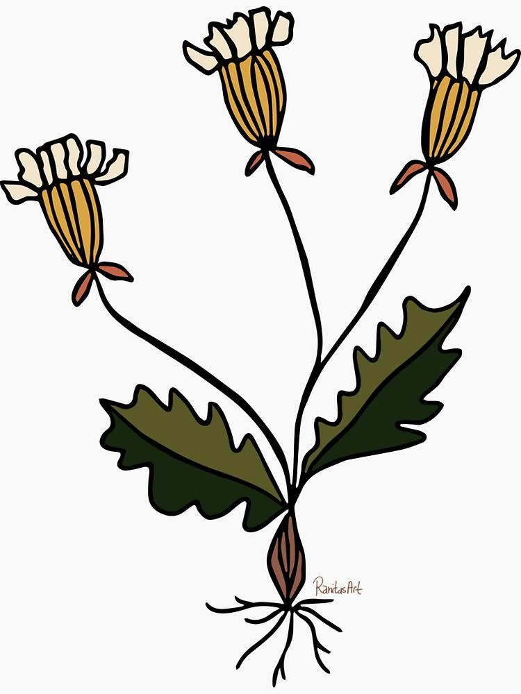 Botanik Blume von RanitasArt