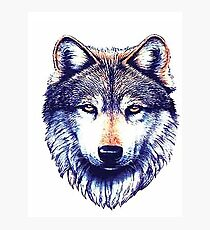 Dire Wolf Photographic Print