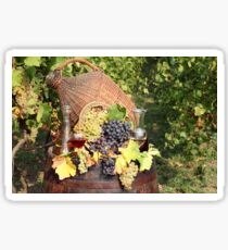 vineyard with grape and wine  Sticker
